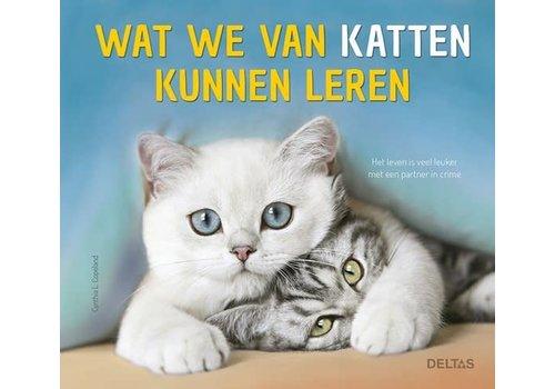 Deltas Wat we van katten kunnen leren