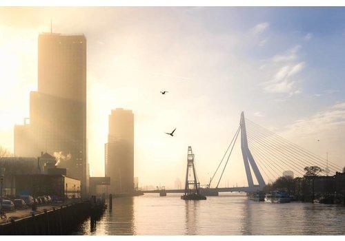 Prachtig Rotterdam Matador en Erasmusbrug