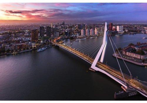 Prachtig Rotterdam Erasmusbrug 3