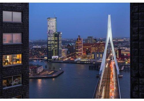 Prachtig Rotterdam Erasmusbrug 4
