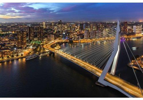Prachtig Rotterdam Erasmusbrug 2