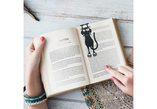 Balvi Boekenlegger kat
