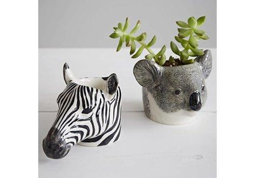 Quail Designs Eierdop of cactus potje- Koala