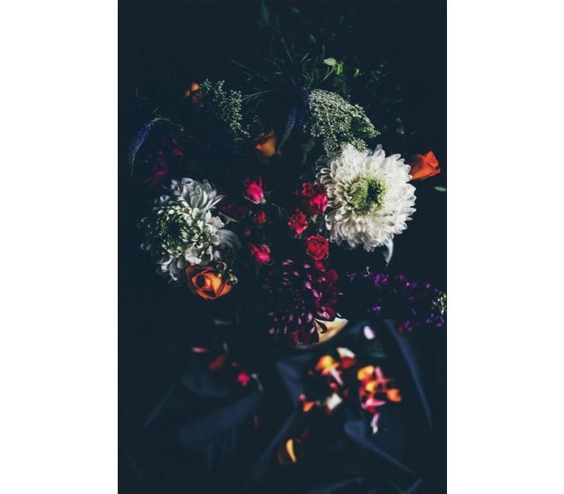botanical stories 011 - Dibond