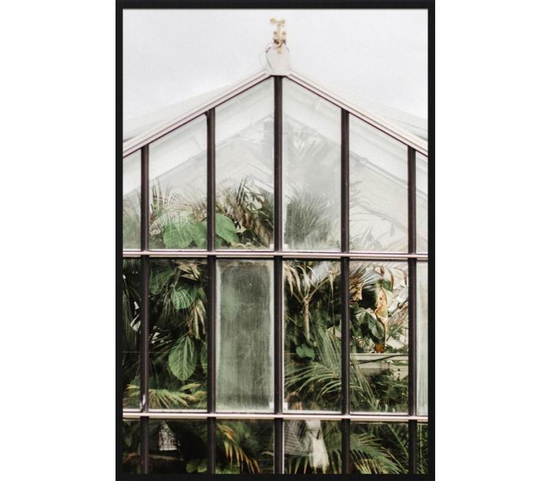 botanical stories 012 - Forex met lijst