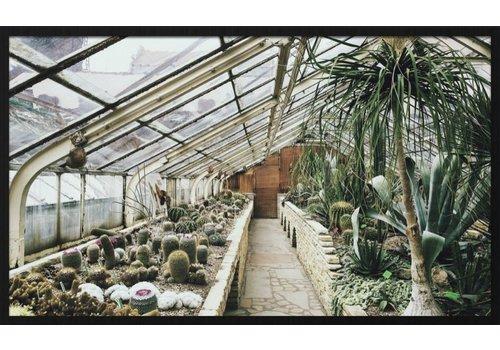 Wandkraft botanical stories 013 - Forex met lijst