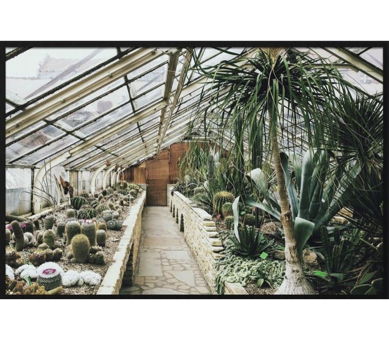 botanical stories 013 - Forex met lijst