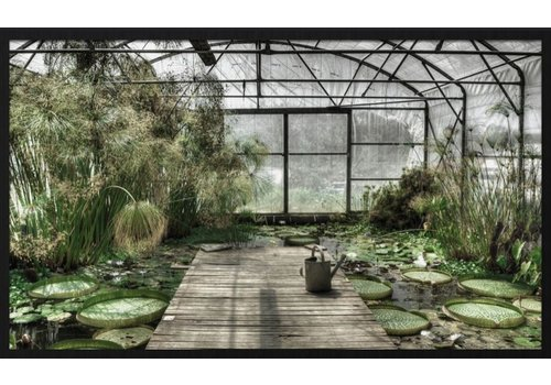 Wandkraft botanical stories 014 - Forex met lijst
