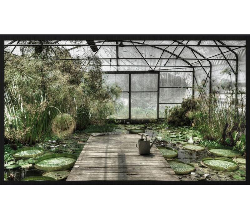 botanical stories 014 - Forex met lijst