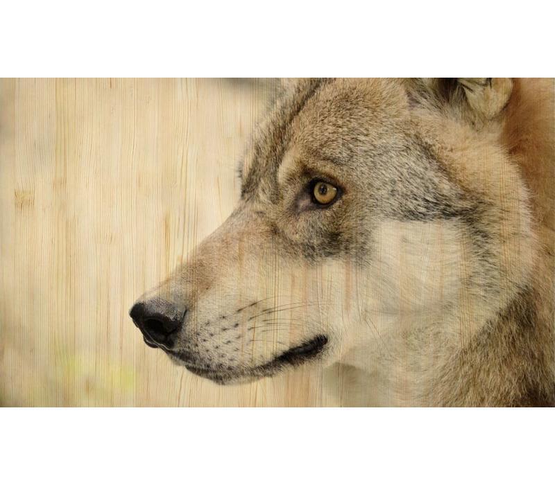 European wildlife 002 - Hout