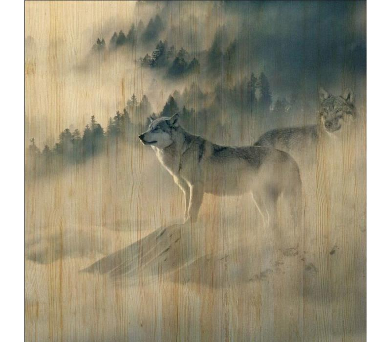 European wildlife 006 - Hout