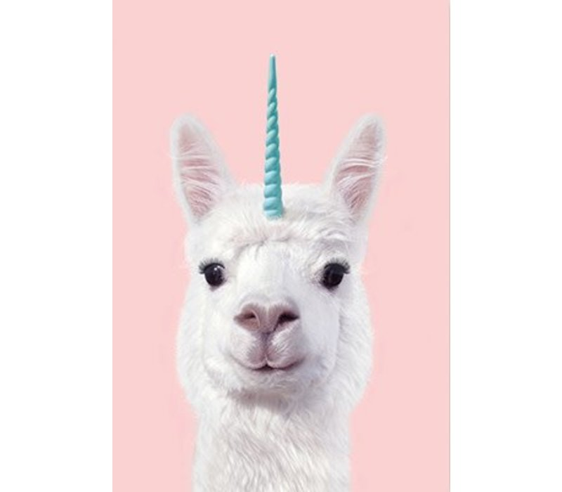 Alpaca Unicorn