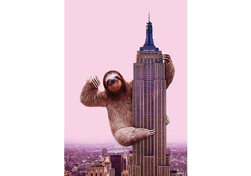King Sloth