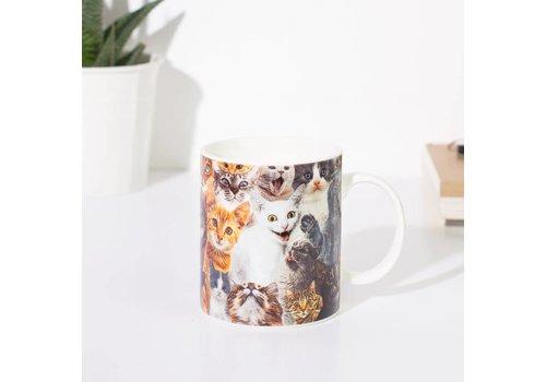 Mags Crazy cat mug
