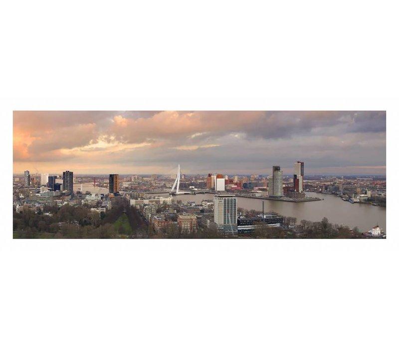 Pink sky Rotterdam