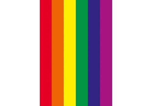 Magneet Rainbow Flag