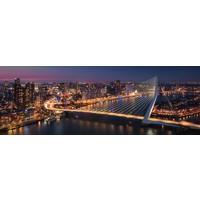 Metropolis Panorama | Rotterdam skyline