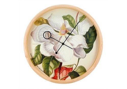 Cloudnola Klok Botanical Magnolia - Dybdahl