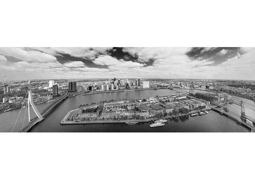 Hannah Anthonysz De Rotterdamse bruggen | Rotterdam skyline