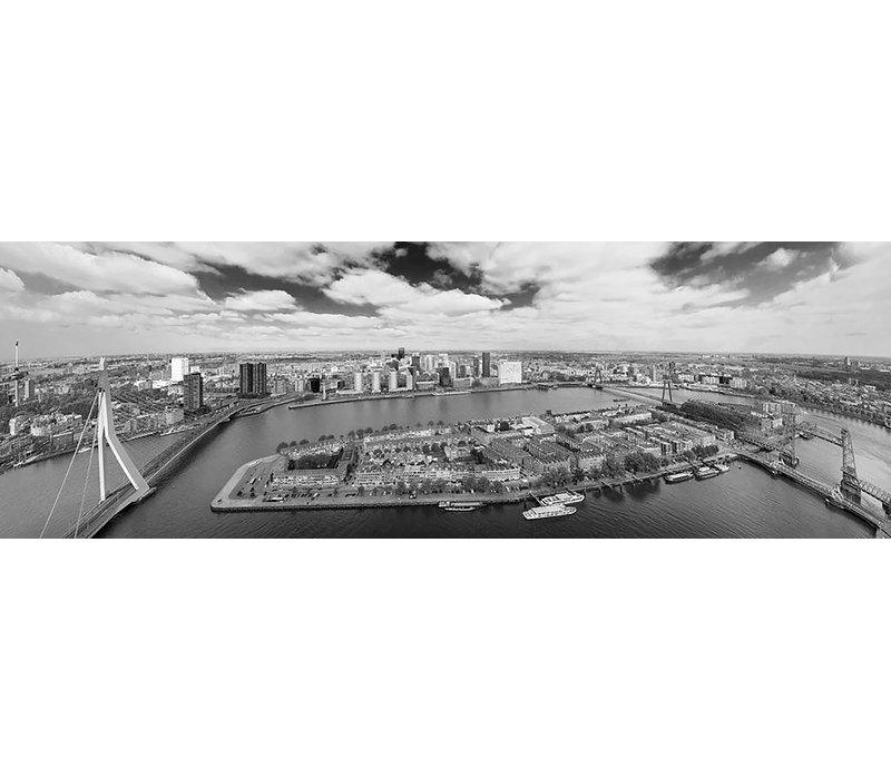 De Rotterdamse bruggen | Rotterdam skyline