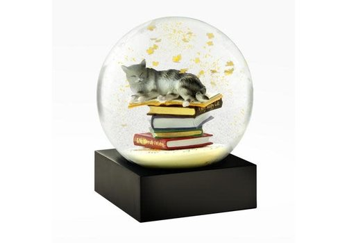 Cool snowglobes Sneeuwbol- Cat on books