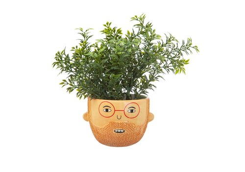 Sass & Belle Mini ross planter