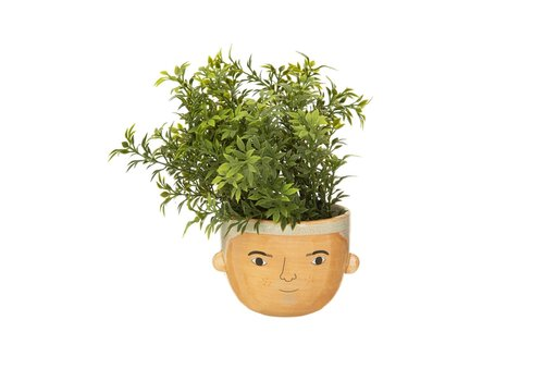 Sass & Belle Mini Bradley planter