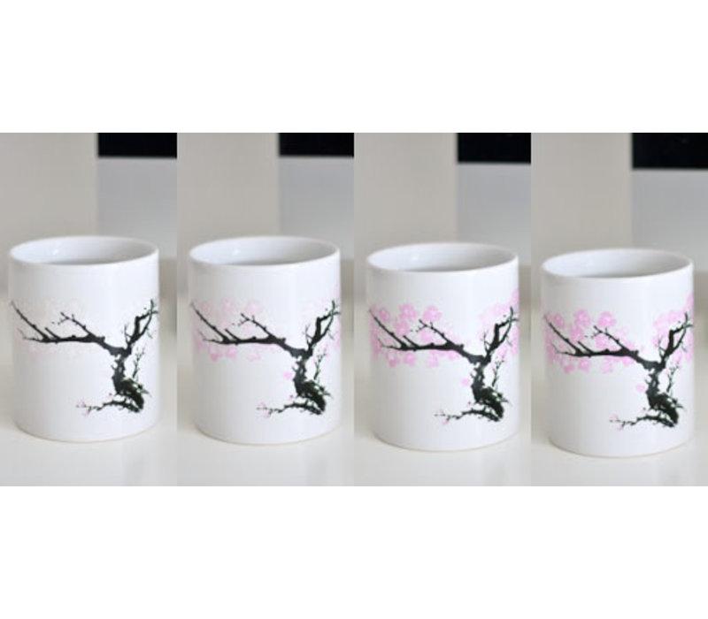 Warmte mok- bloesem Japanse Kers