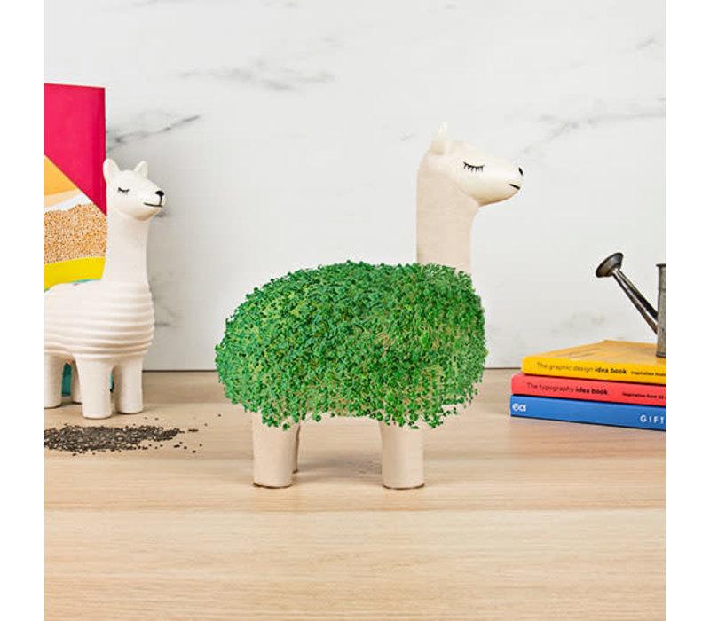 Llama | Planter With Seeds | Lama met Zaadjes