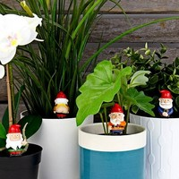 Naughty Gnomes Planters | Kabouter Plantenstekers