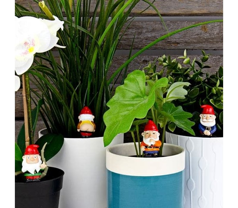 Naughty Gnomes Planters - Kabouter Plantenstekers