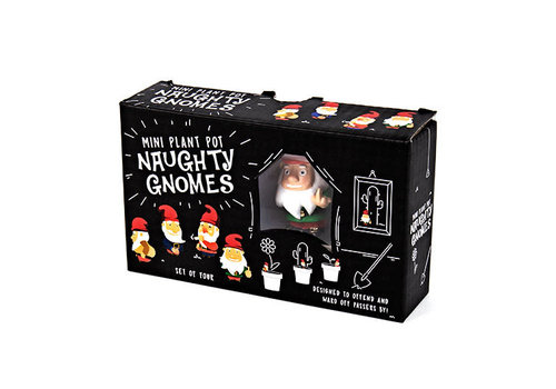 Cortina Naughty Gnomes Planters | Kabouter Plantenstekers