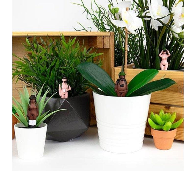 Naakte plantenstekers