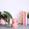 Donkey Lucky Cat - pink