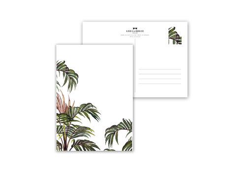 Leo La Douce Jungle Palm