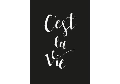 Housevitamin C'est la Vie