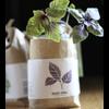 Noted Cultivate & Eat Basil - Dark Opal - Paarse Basilicum Kweken