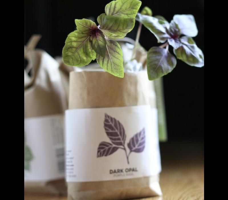 Cultivate & Eat Basil - Dark Opal - Paarse Basilicum Kweken