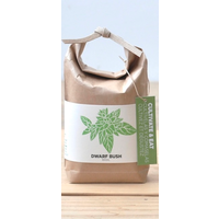 Cultivate & Eat Basil - Dwarf Bush - Groene Dwerg Basilicum Kweken