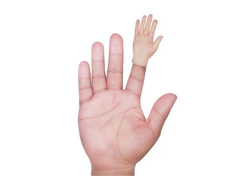 Cortina Fingerpuppet Hand