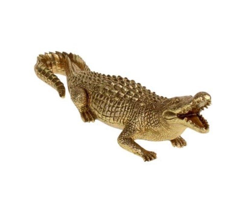 Krokodil- goudkleurig- large