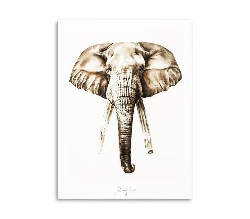 Artprint Bond 40x50cm