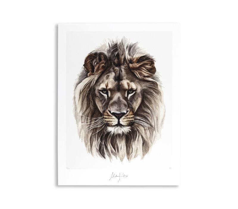 Artprint Leo 40x50cm