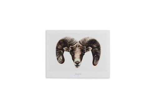 Malou Kalay Aries (ram) artcard