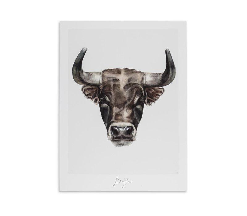 Taurus (stier)  artcard