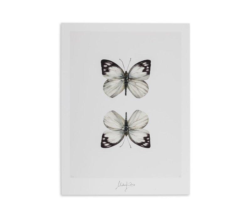 Gemini (tweelingen) artcard