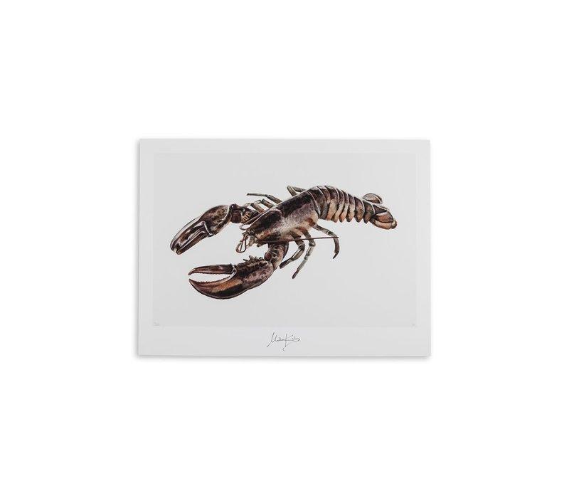 Cancer (kreeft) artcard