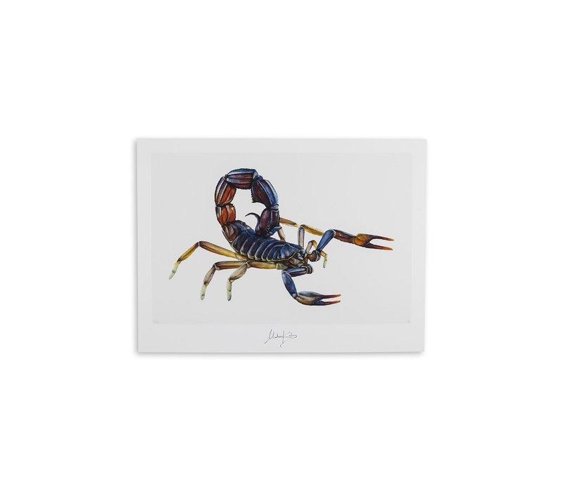 Scorpio (schorpioen) artcard