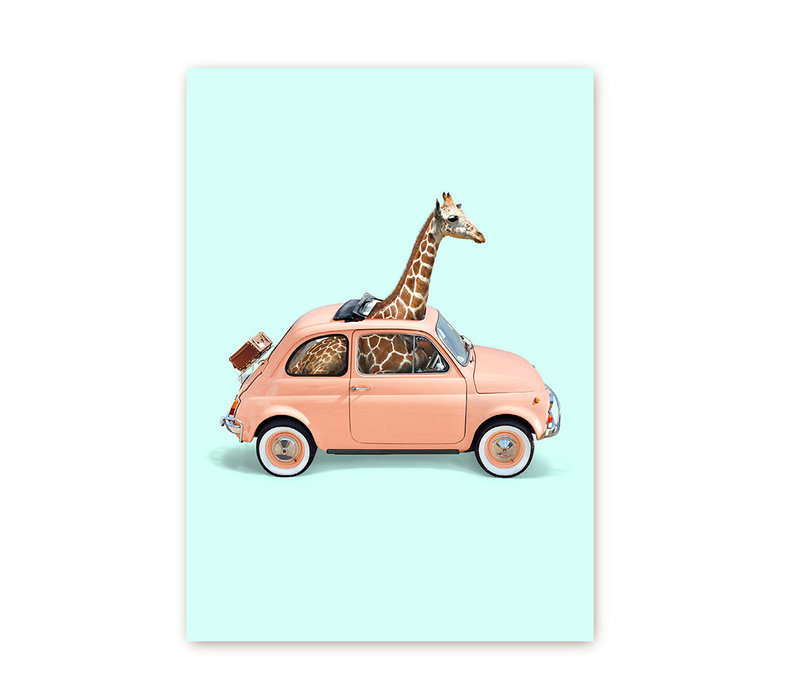 Giraf in Fiat 500