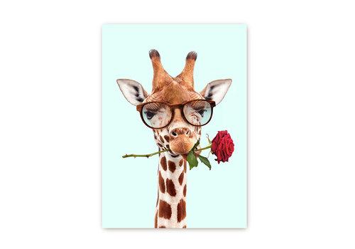 Giraf met roos